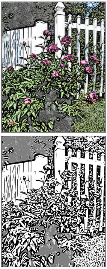 Download a free coloring page or watercolor sketch of The Garden Fence.
