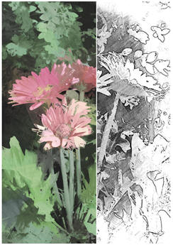 Free Sketch of Abstract Garden Flowers - Create your own easy art with watercolors or pastels.
