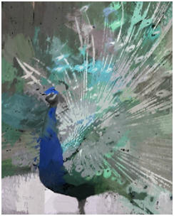 Download a free, semi-abstract wall art print of a strutting peacock with blue, indago, aqua, teal, gray and mauve tones.